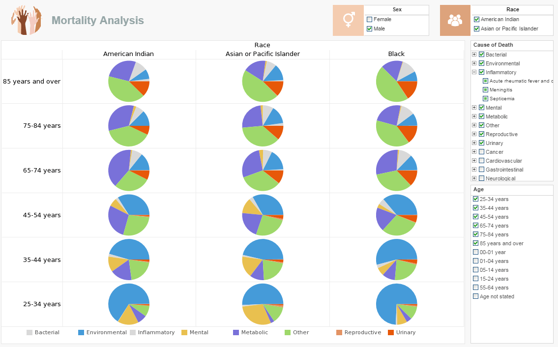 Medical Patient Chart Demographic Dashboard Examples
